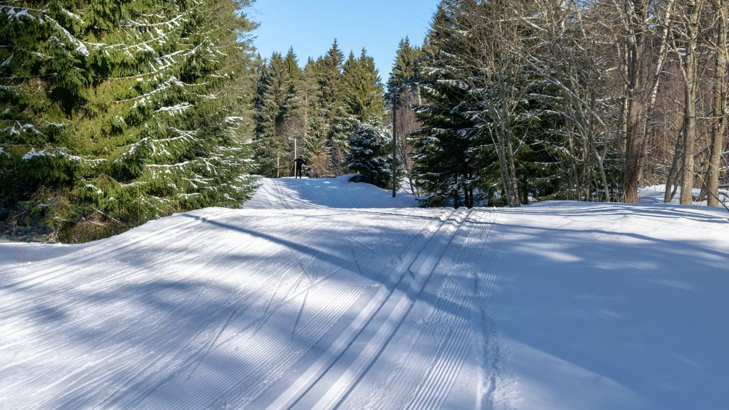 Metsässä oleva mäkinen hiihtoväylä, jossa oikealla latu perinteisen tyylin hiihtäjille ja vasemmalla tasainen alusta vapaan tyylin hiihtäjille. Kaukana näkyy yksi latua pitkin etenevä hiihtäjä. Sää on aurinkoinen.