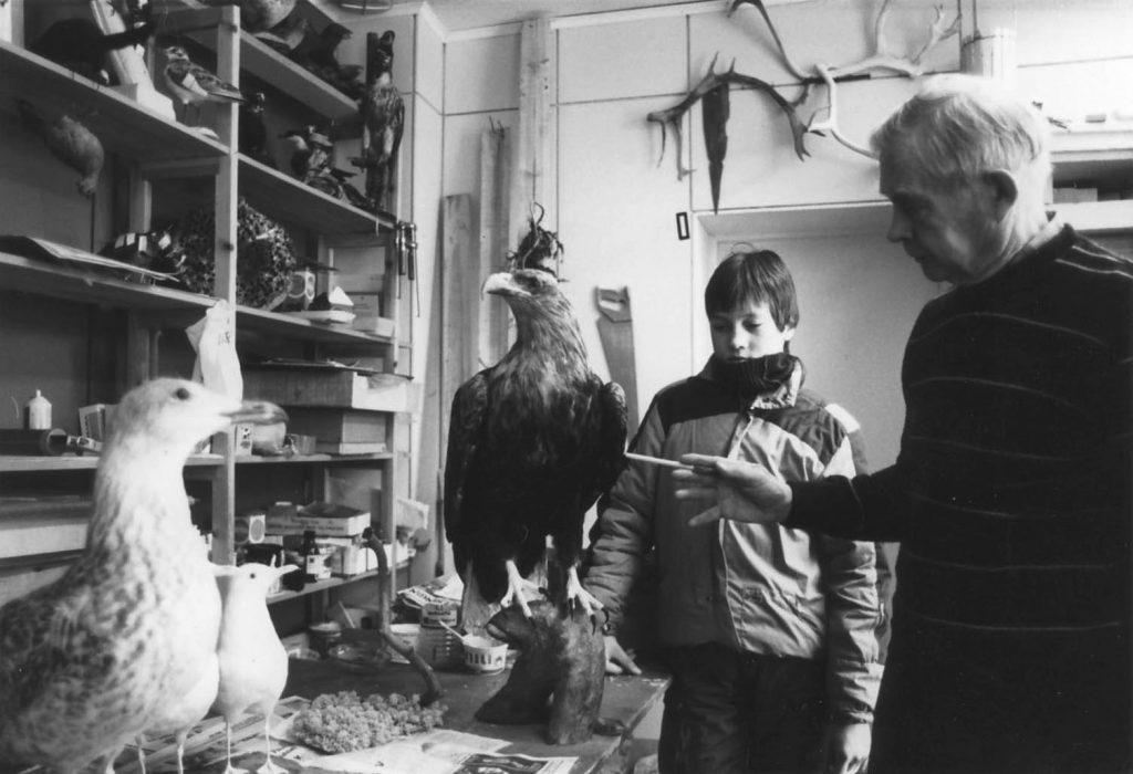 Salkio kertoo eläinten täyttämisestä pojalle. Pöydällä on keskeneräisenä työnä merikotka.