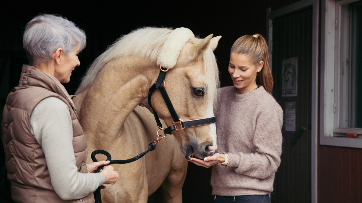 Vaalea hevonen ja kaksi naista
