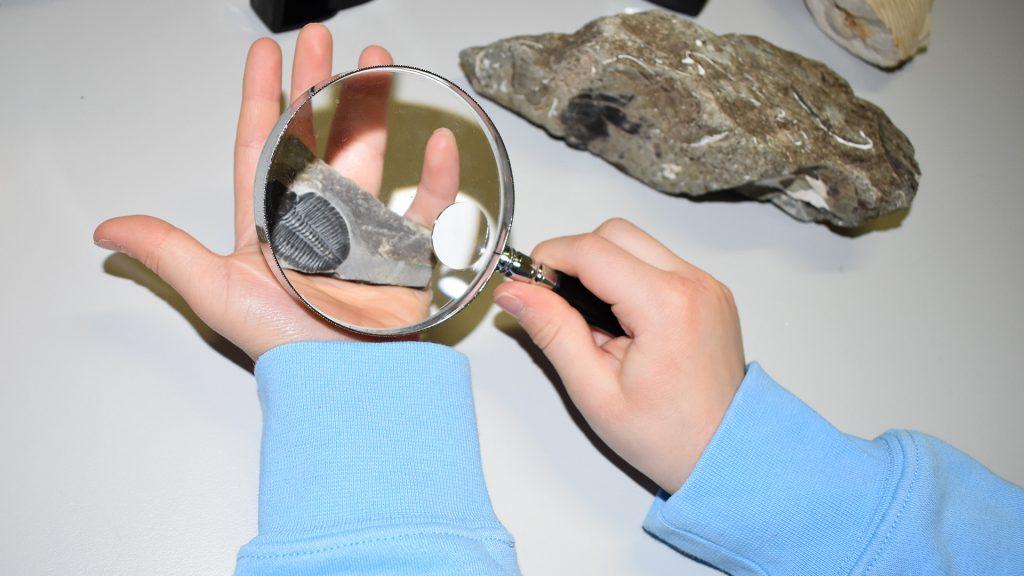 Lapsi tutkii trilobiittifossiilia suurennuslasin avulla.