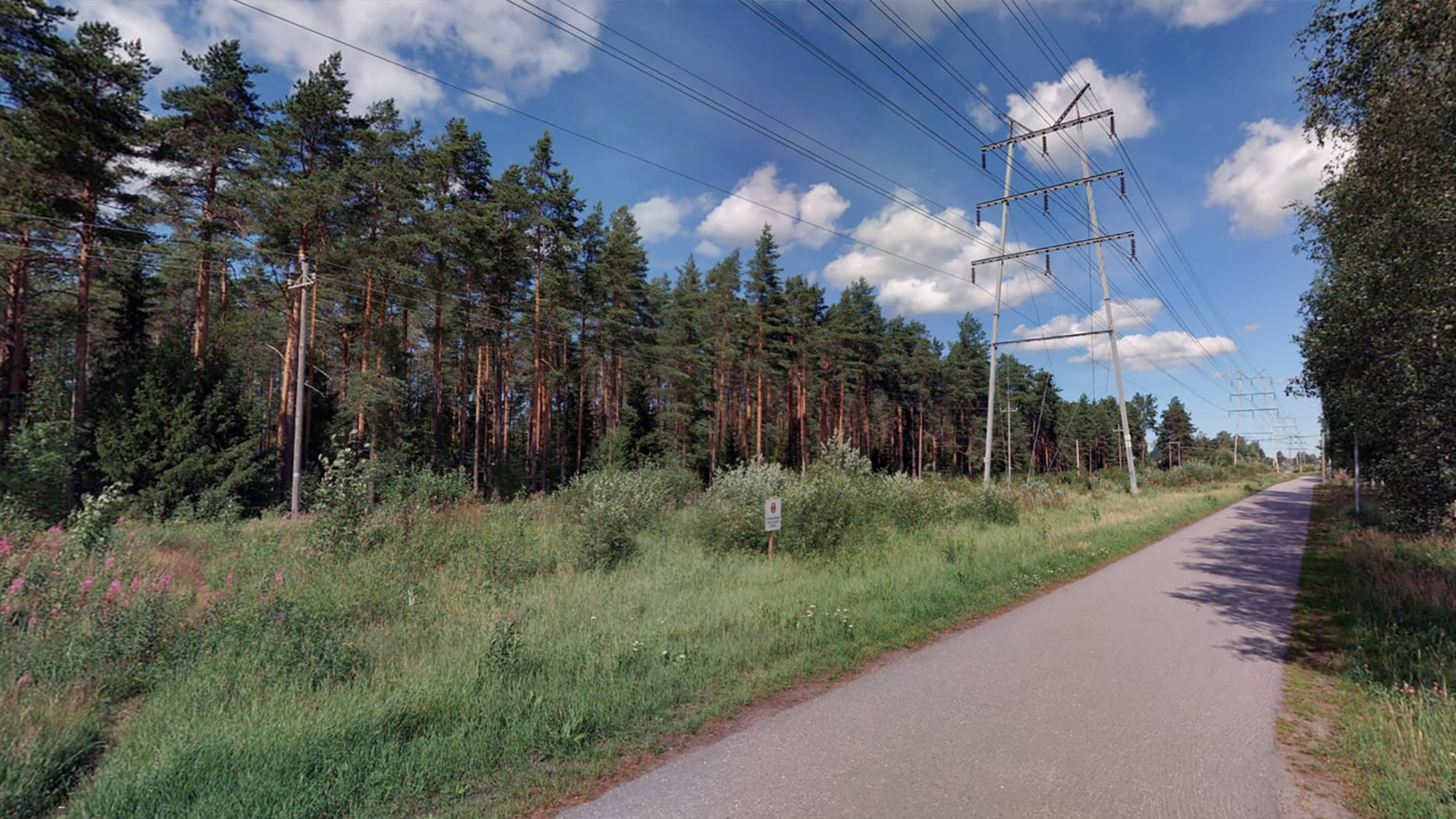 Storspänningsledning vid skogskanten. Bredvid storspänningsledningen finns en cykelväg.