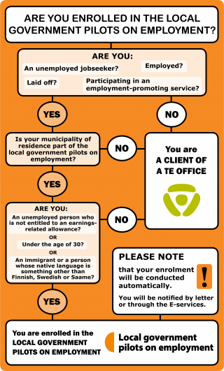 Infographics on local government trial