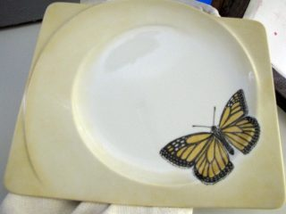 Lautanen; keltainen perhonen.