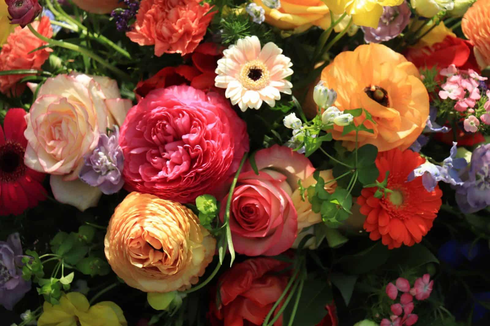 Värikäs kukkakimppu